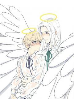 Arcangel Y Querubin [Ring]