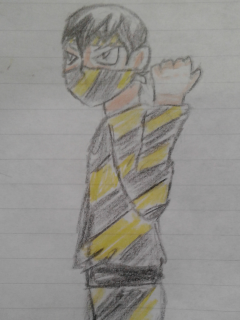 Ninja Tigre 1