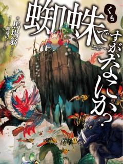 Kumo Desu Ga, Nani Ka ? (Light Novel)
