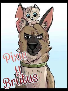 Pixie & Brutus