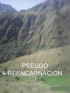 Pseudo-Reencarnación (Novela)